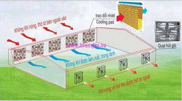 tấm làm mát cooling pad