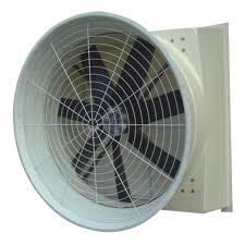 Quạt hút thông gió đem lại không khí trong lành và mát mẻ