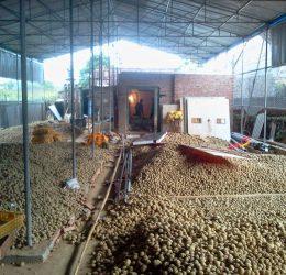 Quạt sấy – Hệ thống sấy nông sản
