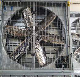 Tư vấn chọn quạt công nghiệp hút gió chính hãng, công suất cao